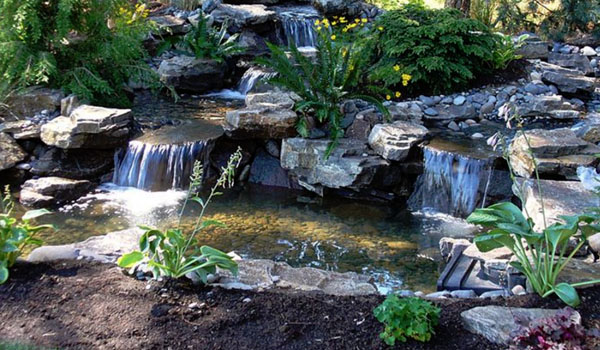 4 types of ponds for your backyard back to nature for Types of pond design