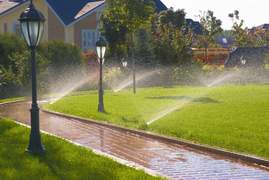 sprinklers on a summer landscape