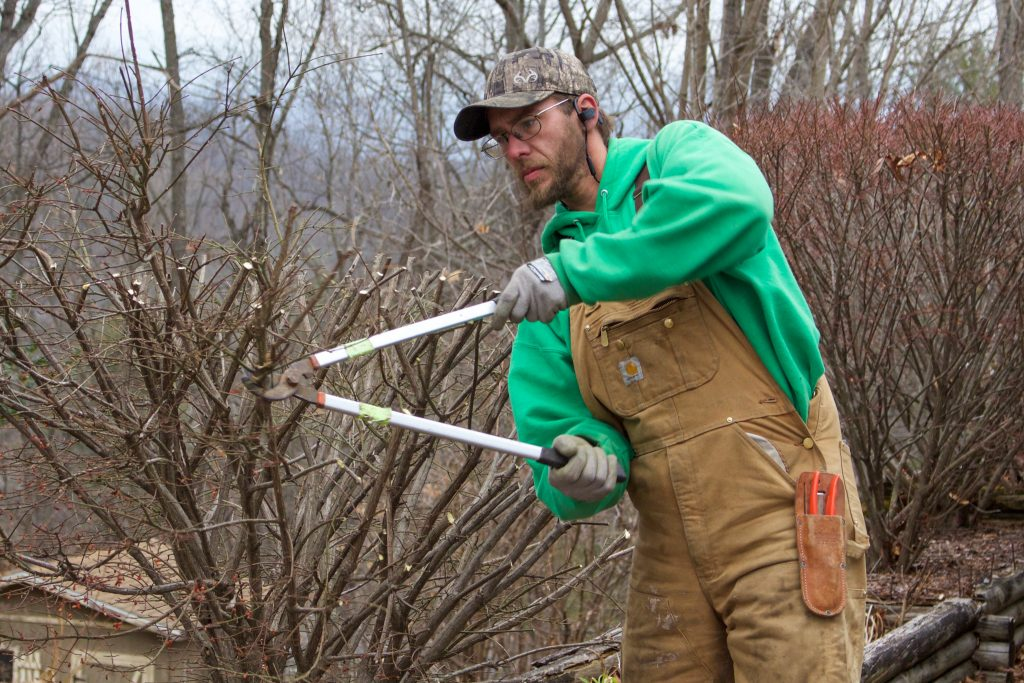 A Back to Nature employee pruning